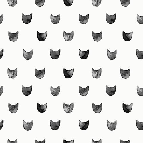 Gatos Graciosos: Recopilamos las fotos y vídeos de gatitos más divertidos por el Día del Gato