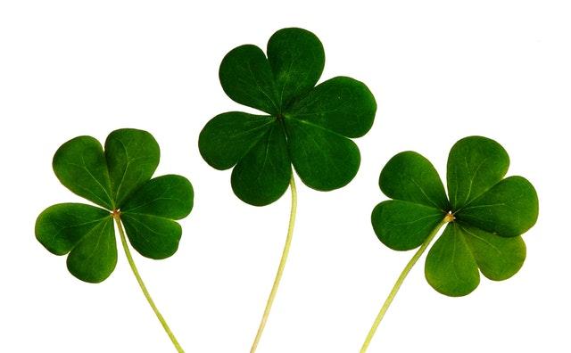 Día de San Patricio: cómo celebrar la gran fiesta irlandesa