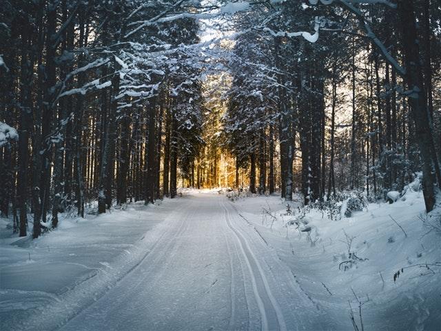 Solsticio de invierno: planes ahora que llega el frío de verdad