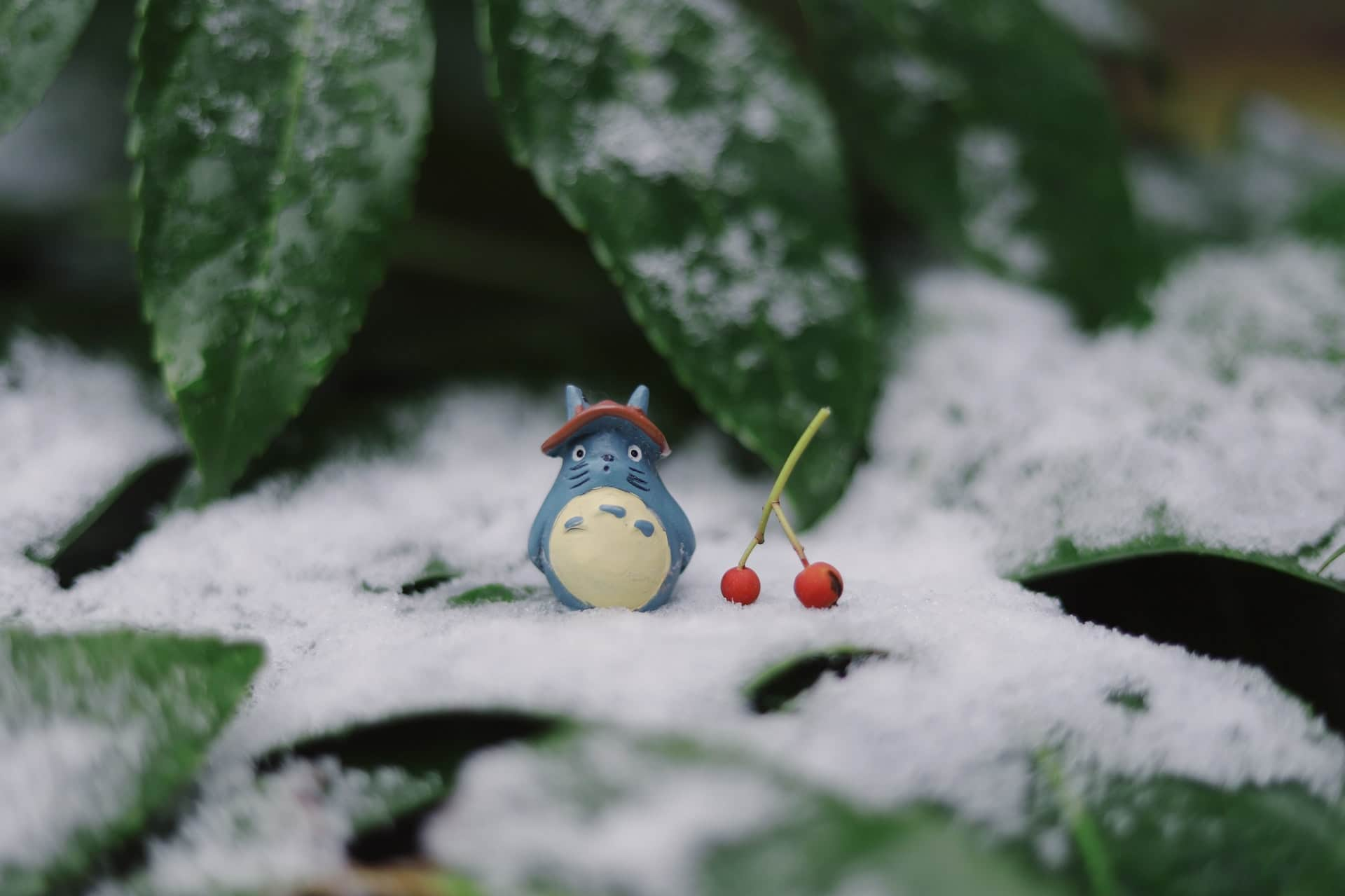 Las mejores películas de Studio Ghibli de la mano de «Mi vecino Miyazaki»