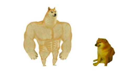 memes-de-animales